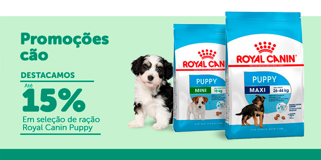 Ofertas cão – Royal Puppy