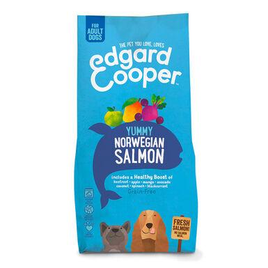 Edgard & Cooper salmão