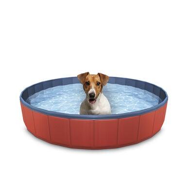 Summer Vibes Piscina para cães