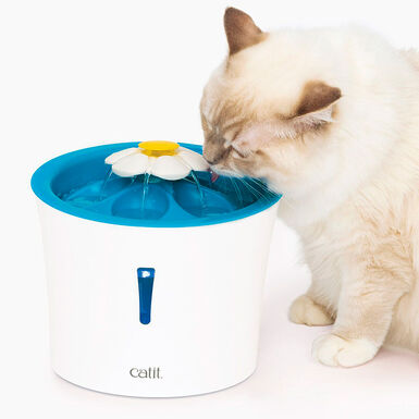 Fonte para gatos Catit Flower Fountain LED