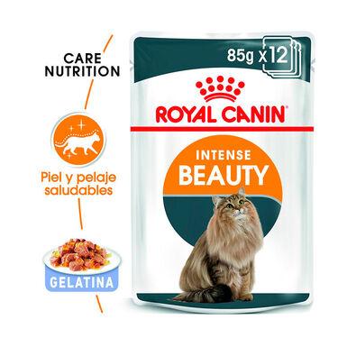 Pack 12 Saquetas Royal Canin Feline Intense Beauty 85 gr