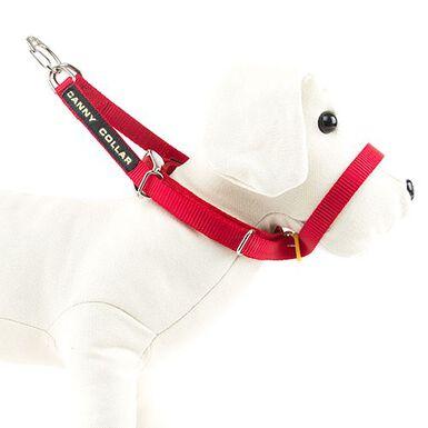 Canny rojo collar de manejo para perros rebeldes