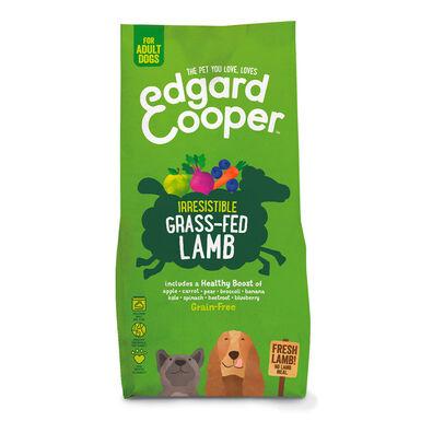 Edgard & Cooper cordeiro