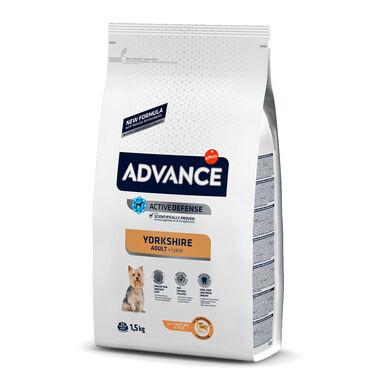 Affinity Advance Yorkshire Terrier 1,5 kg