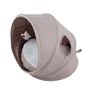Catshion Pop Up Bed