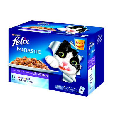 Felix Seleções Favoritas em gelatina 12 x 100 gr
