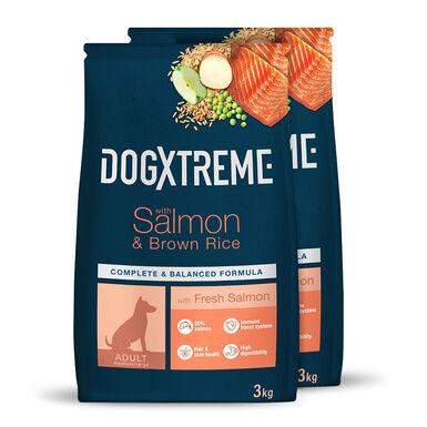 Dogxtreme Salmão e arroz - 2x3 kg Pack Poupança