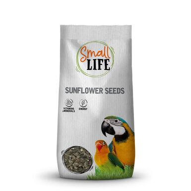 Small Life Sementes de Girassol para Aves 430 gr