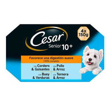 Multipack 24 Latas Cesar Senior 150 gr para cão