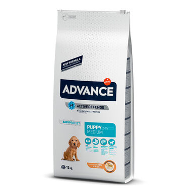 Affinity Advance Medium Puppy frango e arroz
