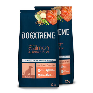 Dogxtreme Salmão e arroz - 2x12 kg Pack Poupança