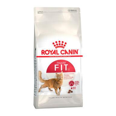 Royal Canin Feline Fit 32 - 2x10 kg Pack Poupança