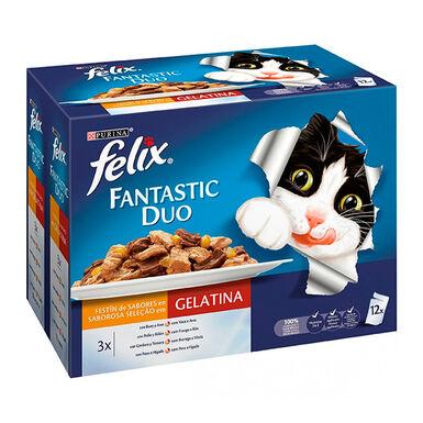 Purina Felix Fantastic Duo Delicious carne 12 x 100 gr
