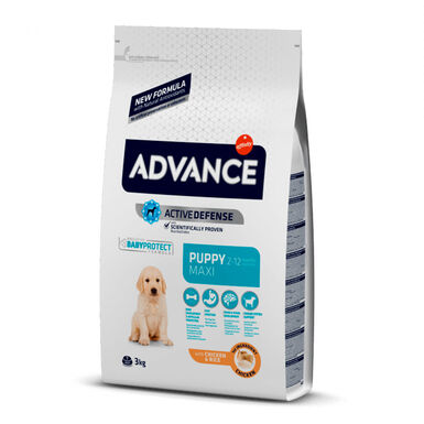 Affinity Advance Maxi Puppy frango e arroz