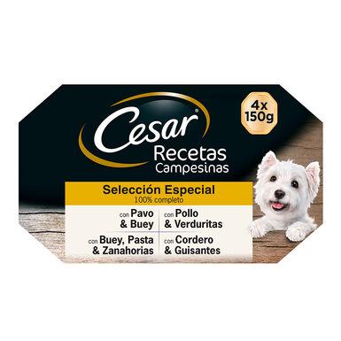 Cesar Multipack Receita Camponesa Seleção Especial 6 x (4x150 gr)