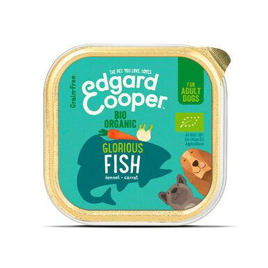 Pack 17 Terrinas Edgard & Cooper comida húmida 100 gr