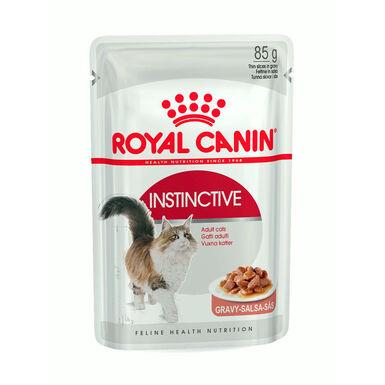 Pack 12 Saquetas Royal Canin Feline Húmido Gelatina 85 gr