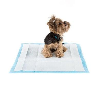 TK Pet elimina-olores empapadores para perros 50uds