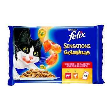 Felix Sensations carne em gelatina sabores sortidos