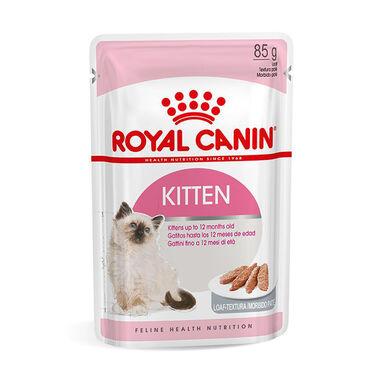 Pack 12 Saquetas Royal Canin Feline Kitten Loaf 85 g