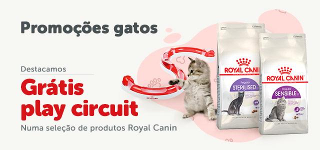 Presentes com Royal Canin!