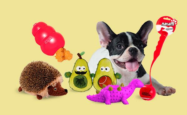 Os brinquedos mais divertidos para o seu cão